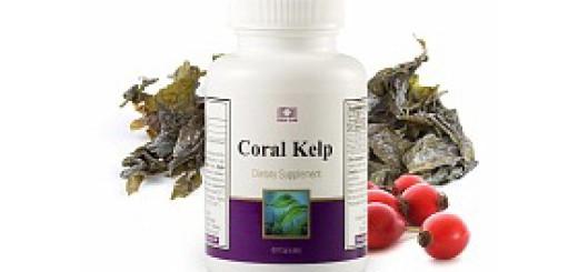 Coral Kelp1