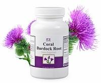 coral-burdock-root