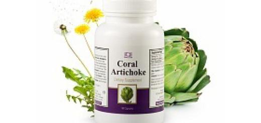 koral-artishok1