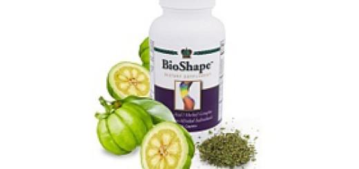 BioShape1