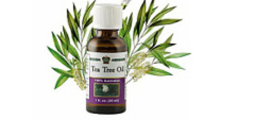 Tea Tree Oil4